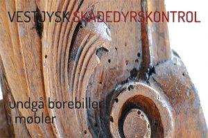 små huller i møbler af træ - tips til borebillebekæmpelse