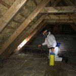 borebillebekæmpelse med sprøjtning på loftet